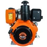 Двигун DM 10.5sne